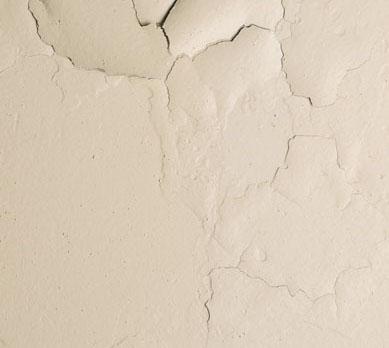 Moister in walls